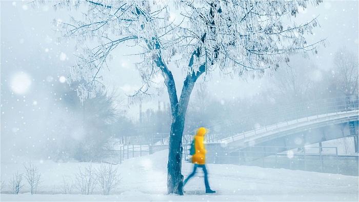 Mùa đông của kí ức