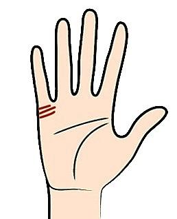 Xem đường chỉ tay để biết liệu bạn có số 'qua hai lần đò'