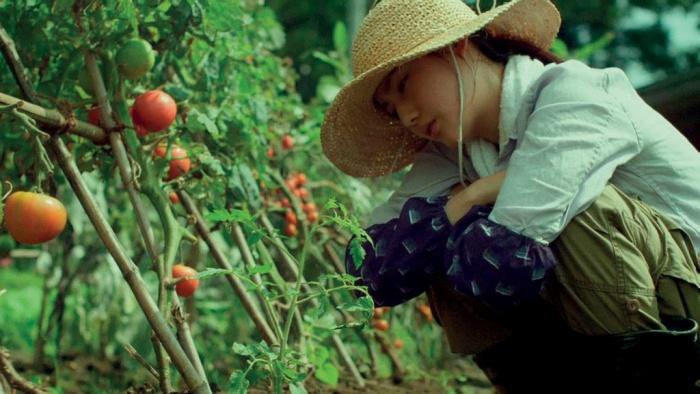 little-forest-thuc-pham-tu-nhien-1024x679