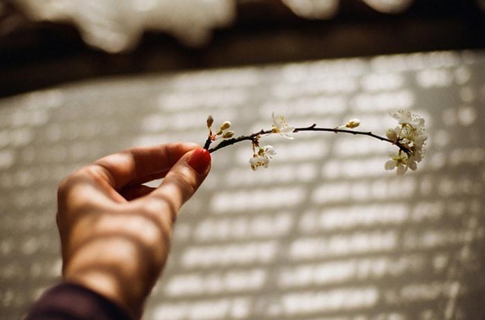 Thời gian có thể chữa lành những vết thương lòng