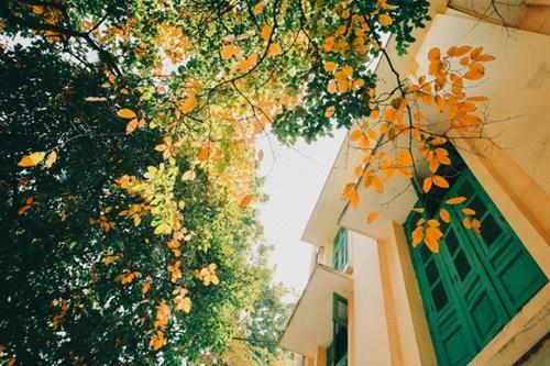 Ký ức Hà Nội mùa thu