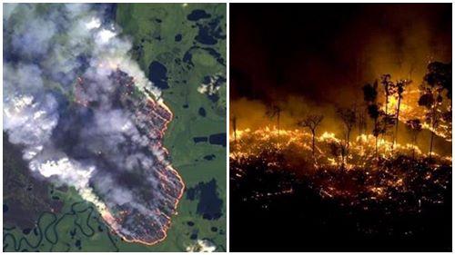 'Lá phổi xanh' của thế giới bốc cháy suốt 17 ngày qua và không hề có dấu hiệu hạ nhiệt