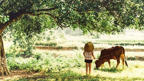 Ai cũng muốn được một lần trở lại tuổi thơ