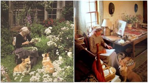 Bà cụ 92 tuổi về quê nuôi chó và trồng thêm rau như trong truyện cổ tích