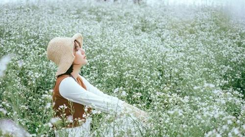 Trời xanh hoa nở, bỏ lỡ cô đơn