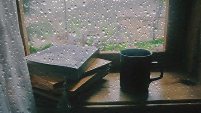 Những khoảng lặng trong mưa