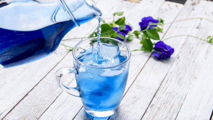 Cậu ngọt ngào như ly trà hoa đậu biếc