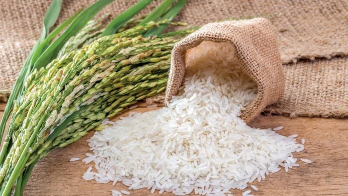 Gạo - tinh hoa ẩm thực Việt