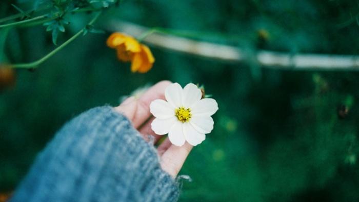 Hãy sống theo mong ước của bản thân thay vì làm vui lòng người khác