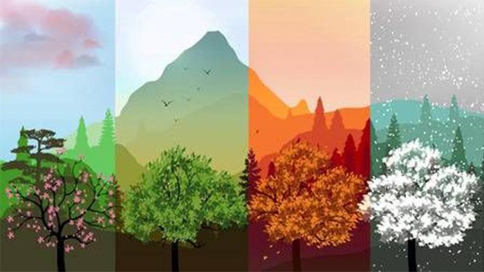 Bốn mùa yêu lại