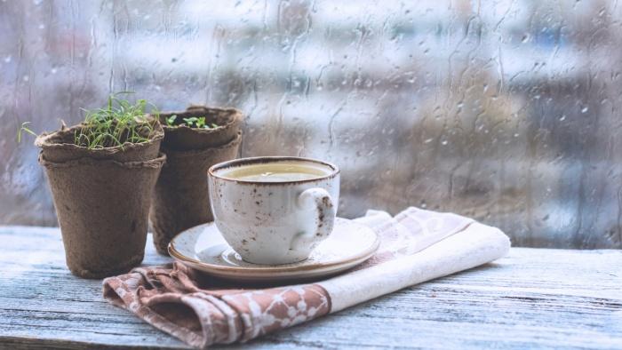 Cà phê và mưa